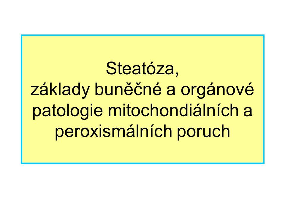 Steatóza, základy buněčné a orgánové patologie mitochondiálních a peroxismálních poruch