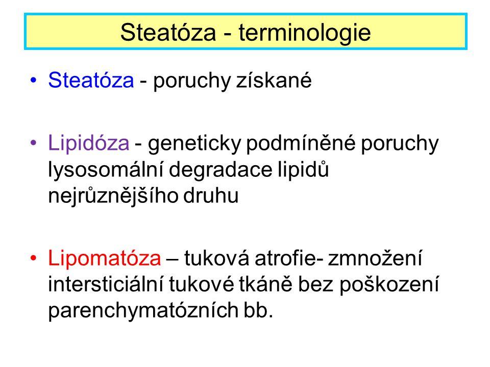 Steatóza - poruchy získané Lipidóza - geneticky podmíněné poruchy lysosomální degradace lipidů nejrůznějšího druhu Lipomatóza – tuková atrofie- zmnože