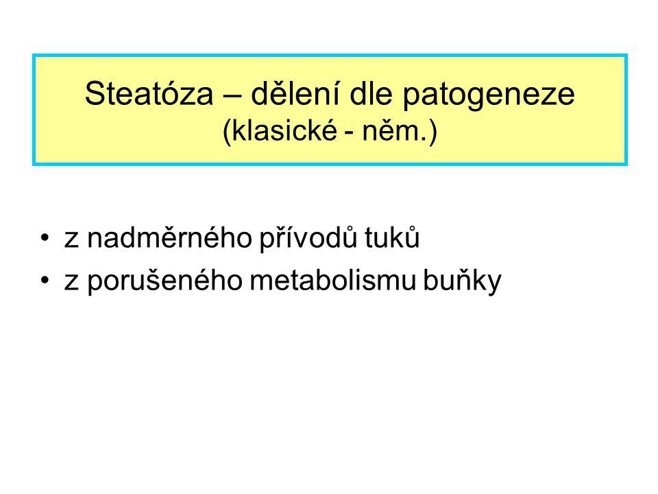 z nadměrného přívodů tuků z porušeného metabolismu buňky Steatóza – dělení dle patogeneze (klasické - něm.)