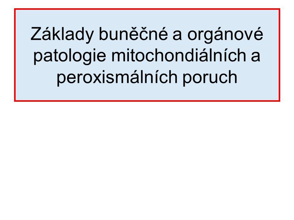 Základy buněčné a orgánové patologie mitochondiálních a peroxismálních poruch