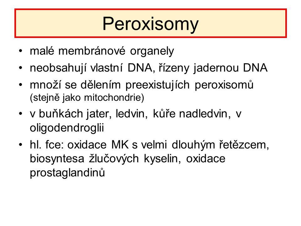 Peroxisomy malé membránové organely neobsahují vlastní DNA, řízeny jadernou DNA množí se dělením preexistujích peroxisomů (stejně jako mitochondrie) v