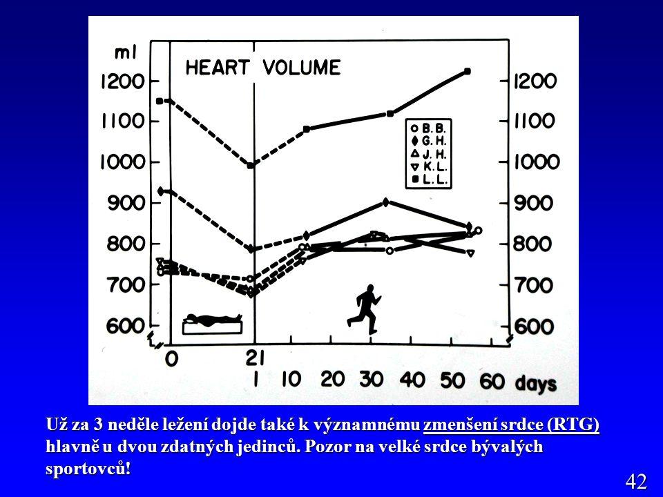 Už za 3 neděle ležení dojde také k významnému zmenšení srdce (RTG) hlavně u dvou zdatných jedinců.