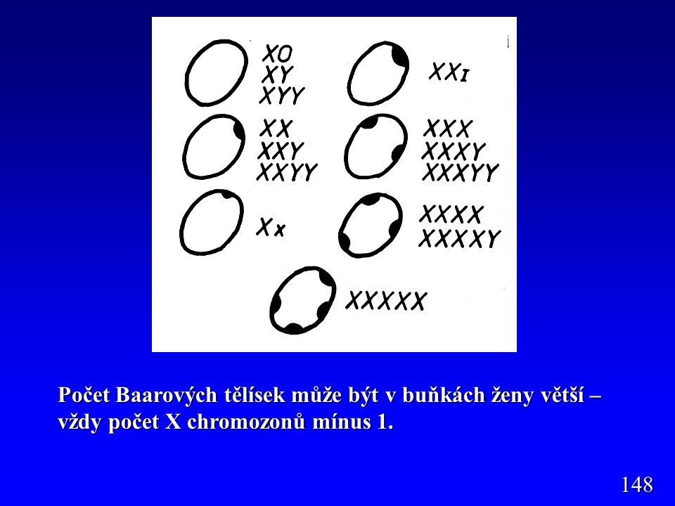 Počet Baarových tělísek může být v buňkách ženy větší – vždy počet X chromozonů mínus 1. 148