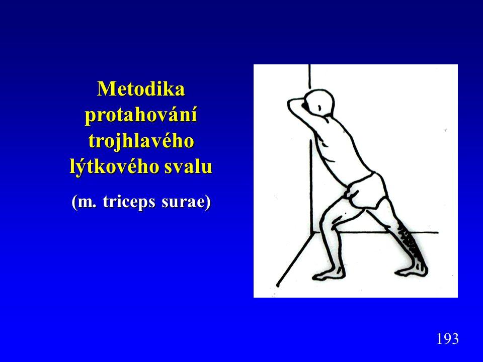 Metodika protahování trojhlavého lýtkového svalu (m. triceps surae) 193