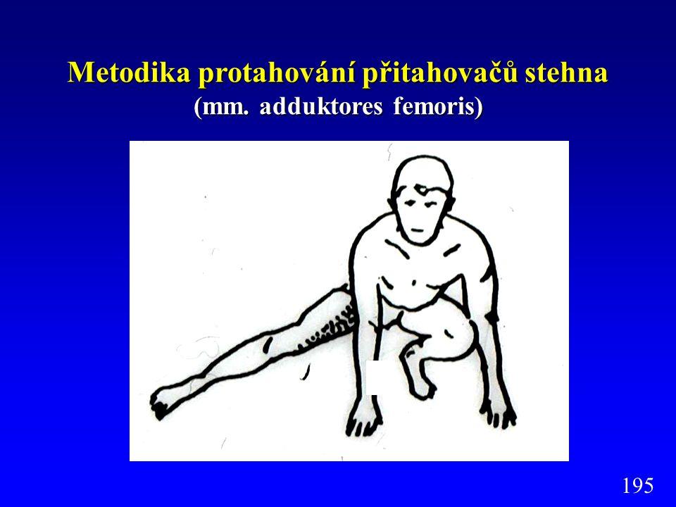 Metodika protahování přitahovačů stehna (mm. adduktores femoris) 195