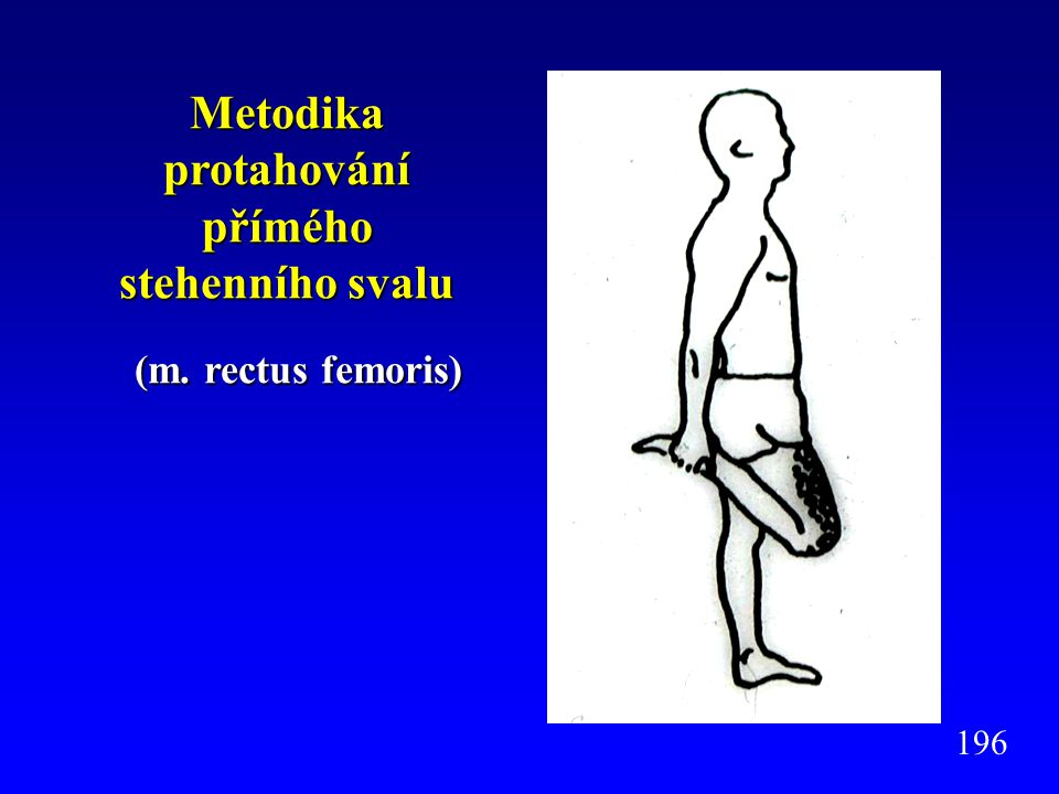 Metodika protahování přímého stehenního svalu (m. rectus femoris) (m. rectus femoris) 196