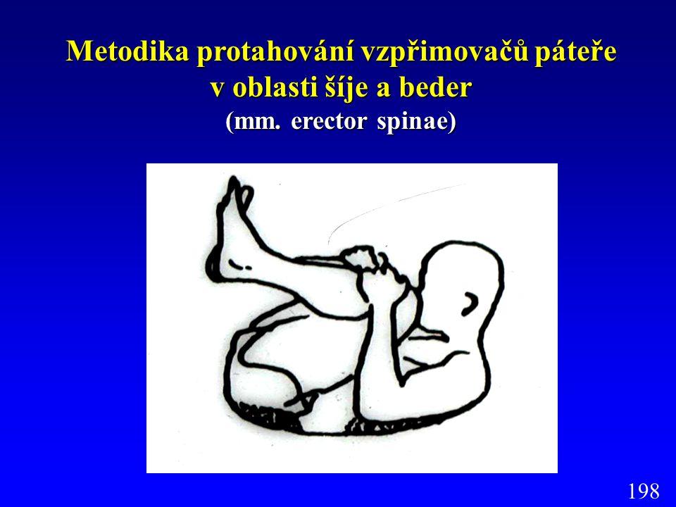 Metodika protahování vzpřimovačů páteře v oblasti šíje a beder (mm. erector spinae) 198