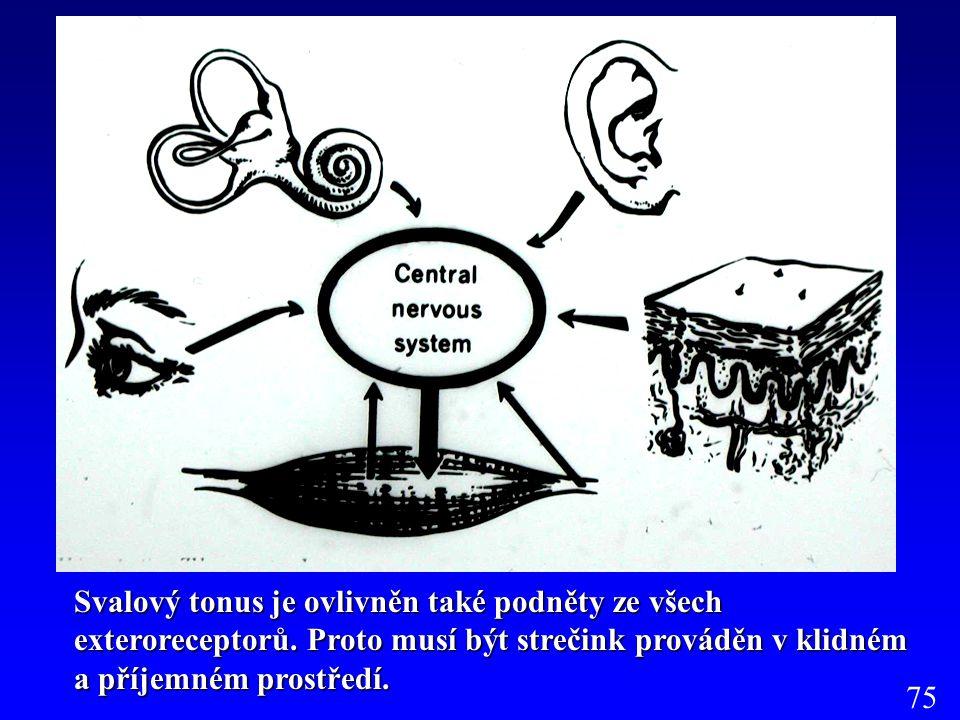 Svalový tonus je ovlivněn také podněty ze všech exteroreceptorů. Proto musí být strečink prováděn v klidném a příjemném prostředí. 75