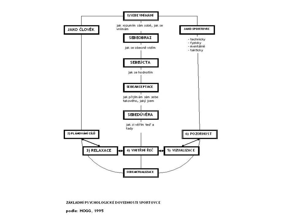 Výhody sebedůvěry  pozitivní emoce  koncentrace  cíle  úsilí  herní (soutěžní) strategie  schopnost zvrátit negativní vývoj