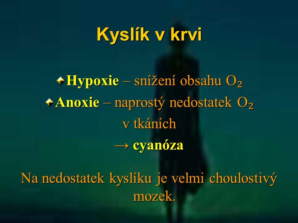 Kyslík v krvi Hypoxie – snížení obsahu O ₂ Anoxie – naprostý nedostatek O ₂ v tkáních → cyanóza Na nedostatek kyslíku je velmi choulostivý mozek.