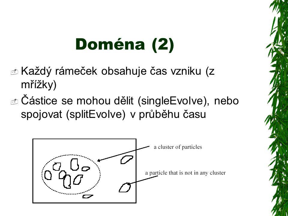 Doména (2)  Každý rámeček obsahuje čas vzniku (z mřížky)  Částice se mohou dělit (singleEvolve), nebo spojovat (splitEvolve) v průběhu času