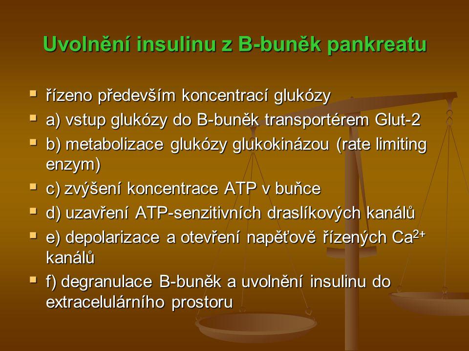Uvolnění insulinu z B-buněk pankreatu  řízeno především koncentrací glukózy  a) vstup glukózy do B-buněk transportérem Glut-2  b) metabolizace gluk