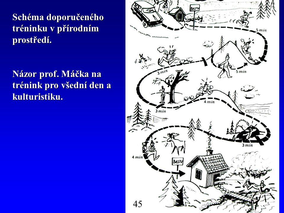 Schéma doporučeného tréninku v přírodním prostředí. Názor prof. Máčka na trénink pro všední den a kulturistiku. 45