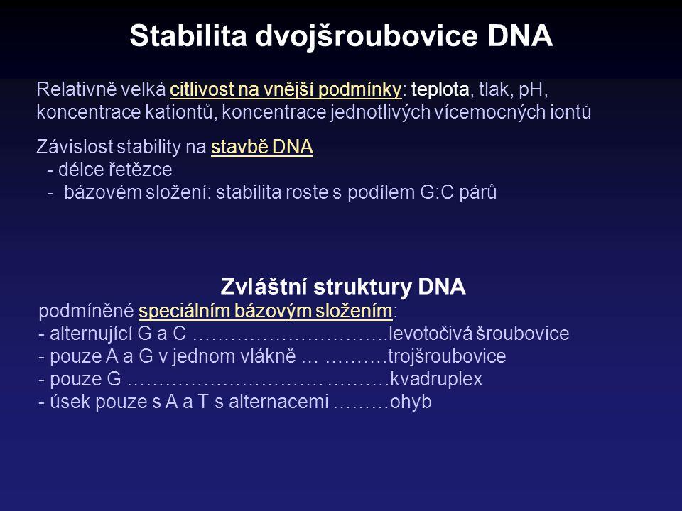Stabilita dvojšroubovice DNA Relativně velká citlivost na vnější podmínky: teplota, tlak, pH, koncentrace kationtů, koncentrace jednotlivých vícemocný