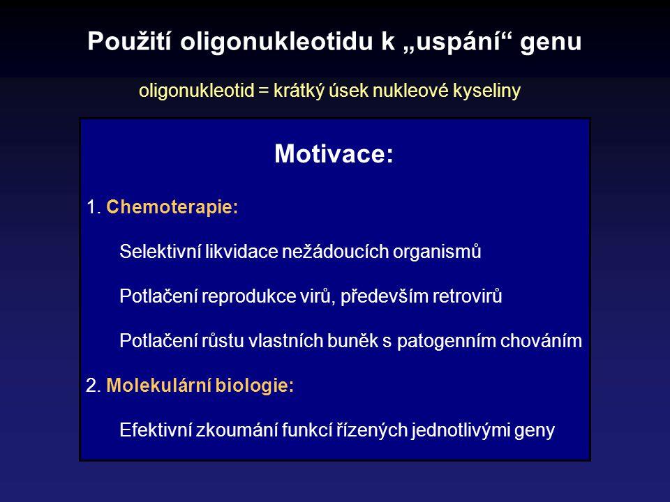 """Použití oligonukleotidu k """"uspání"""" genu oligonukleotid = krátký úsek nukleové kyseliny Motivace: 1. Chemoterapie: Selektivní likvidace nežádoucích org"""