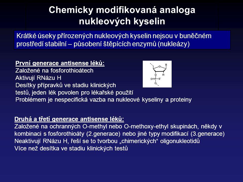 Chemicky modifikovaná analoga nukleových kyselin Krátké úseky přírozených nukleových kyselin nejsou v buněčném prostředí stabilní – působení štěpících