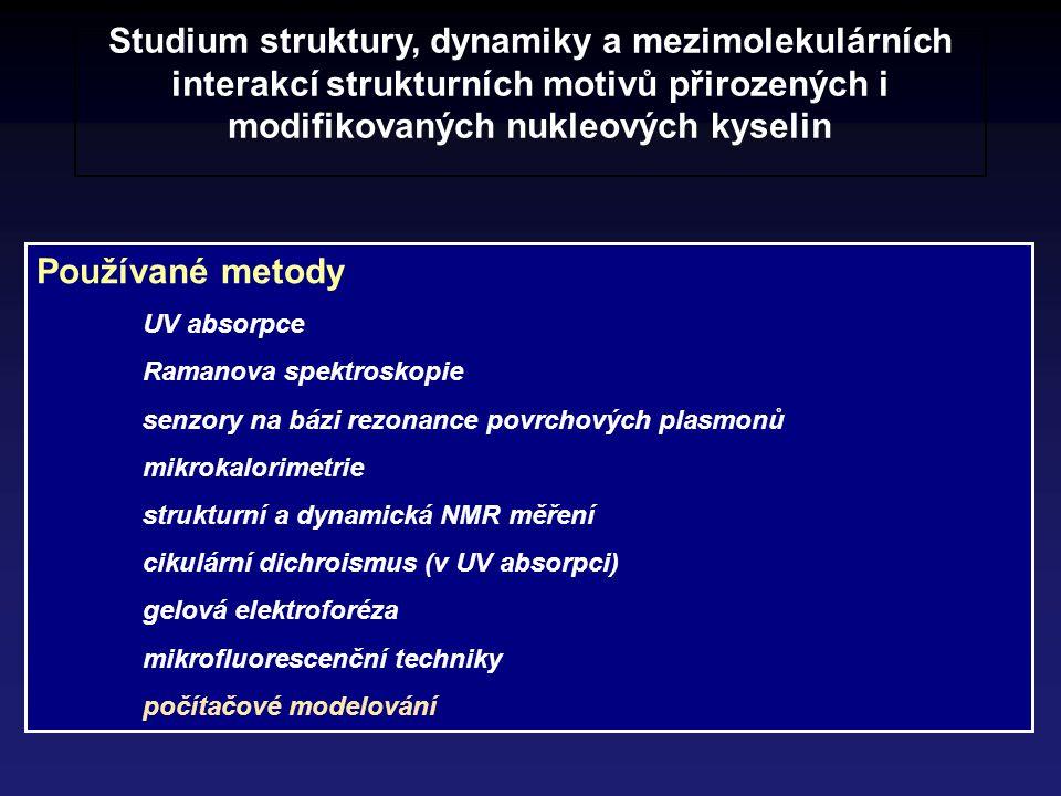 Studium struktury, dynamiky a mezimolekulárních interakcí strukturních motivů přirozených i modifikovaných nukleových kyselin Používané metody UV abso