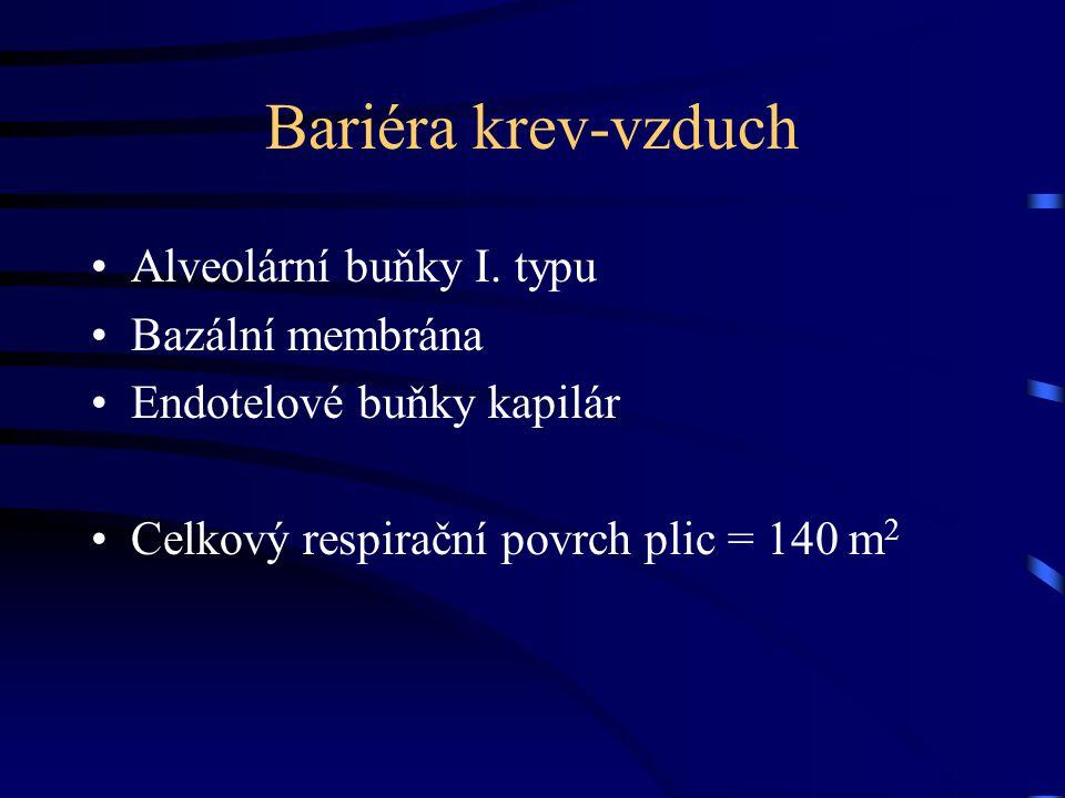 Bariéra krev-vzduch Alveolární buňky I.