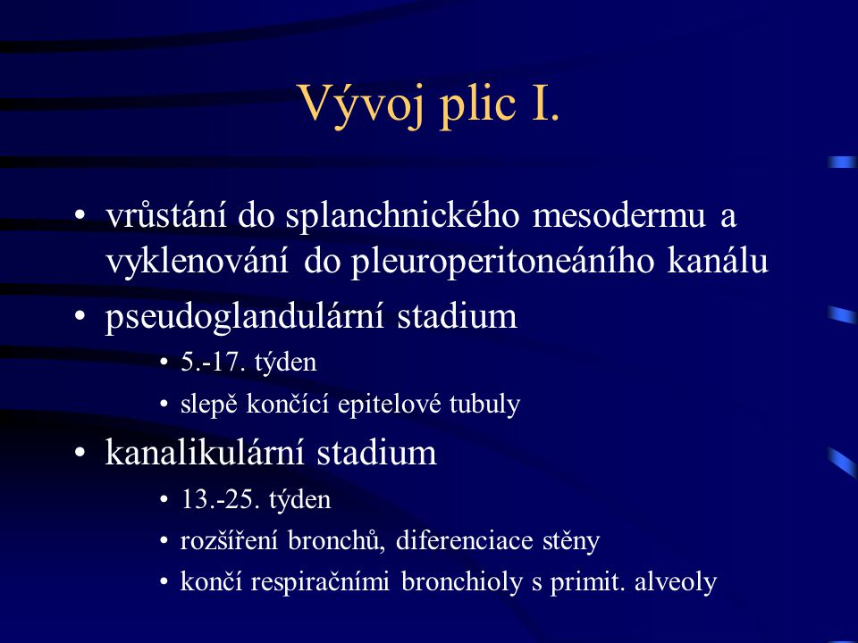 Vývoj plic I. vrůstání do splanchnického mesodermu a vyklenování do pleuroperitoneáního kanálu pseudoglandulární stadium 5.-17. týden slepě končící ep