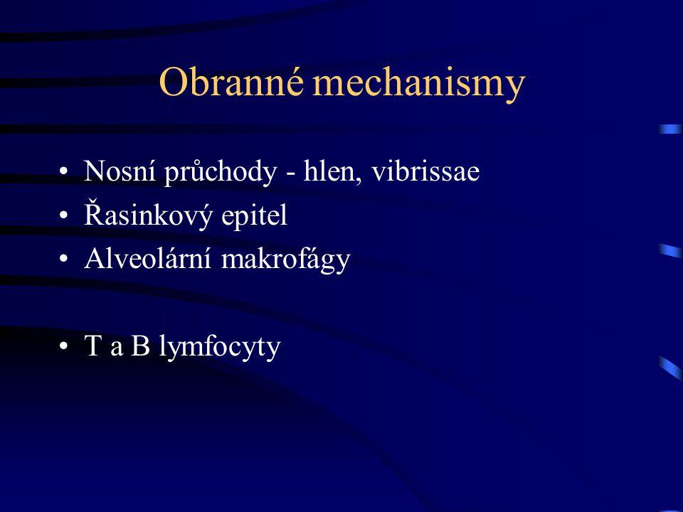 Obranné mechanismy Nosní průchody - hlen, vibrissae Řasinkový epitel Alveolární makrofágy T a B lymfocyty