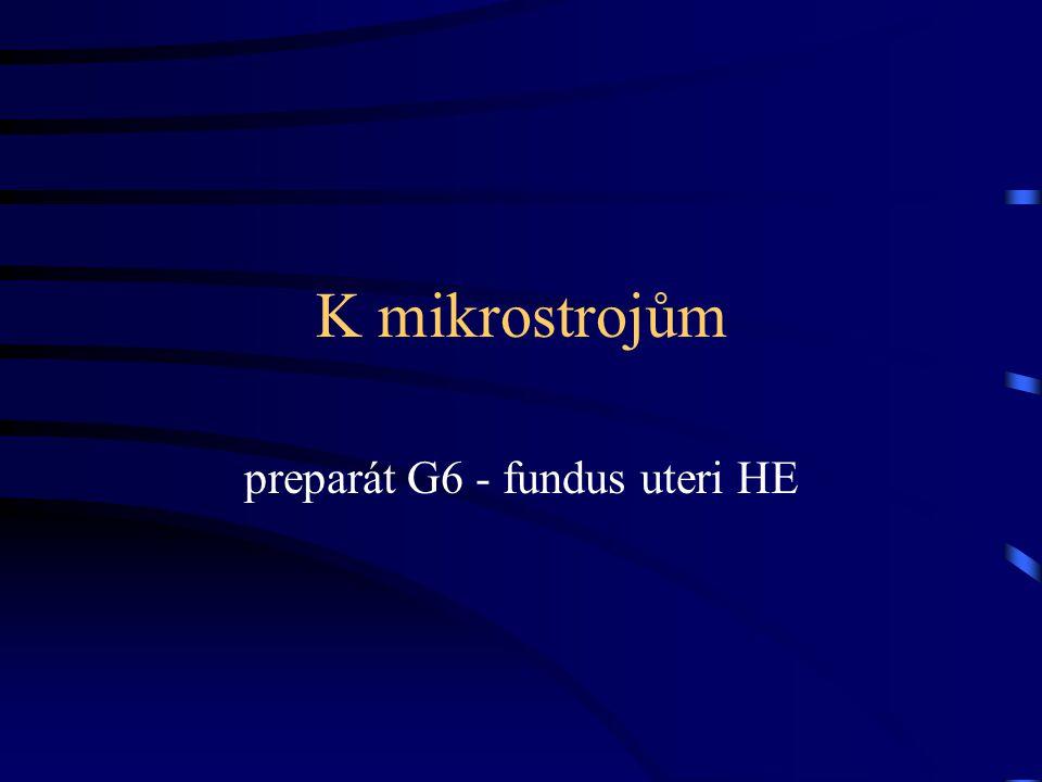 K mikrostrojům preparát G6 - fundus uteri HE