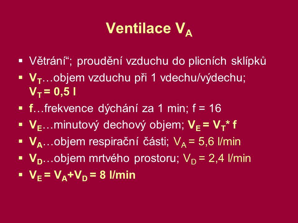 Ventilace V A  Větrání ; proudění vzduchu do plicních sklípků  V T …objem vzduchu při 1 vdechu/výdechu; V T = 0,5 l  f…frekvence dýchání za 1 min; f = 16  V E …minutový dechový objem; V E = V T * f  V A …objem respirační části; V A = 5,6 l/min  V D …objem mrtvého prostoru; V D = 2,4 l/min  V E = V A +V D = 8 l/min