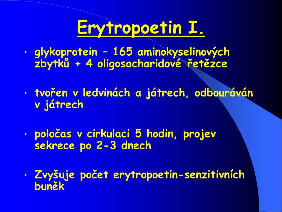 Erytropoetin I. glykoprotein – 165 aminokyselinových zbytků + 4 oligosacharidové řetězce tvořen v ledvinách a játrech, odbouráván v játrech poločas v