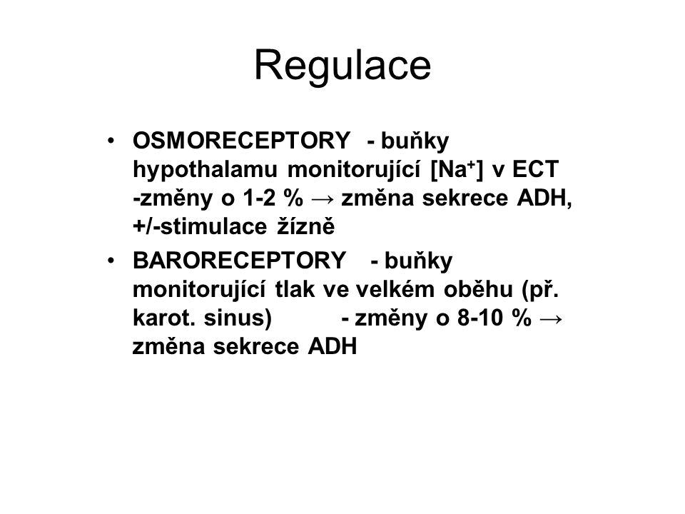 Regulace OSMORECEPTORY - buňky hypothalamu monitorující [Na + ] v ECT -změny o 1-2 % → změna sekrece ADH, +/-stimulace žízně BARORECEPTORY - buňky monitorující tlak ve velkém oběhu (př.