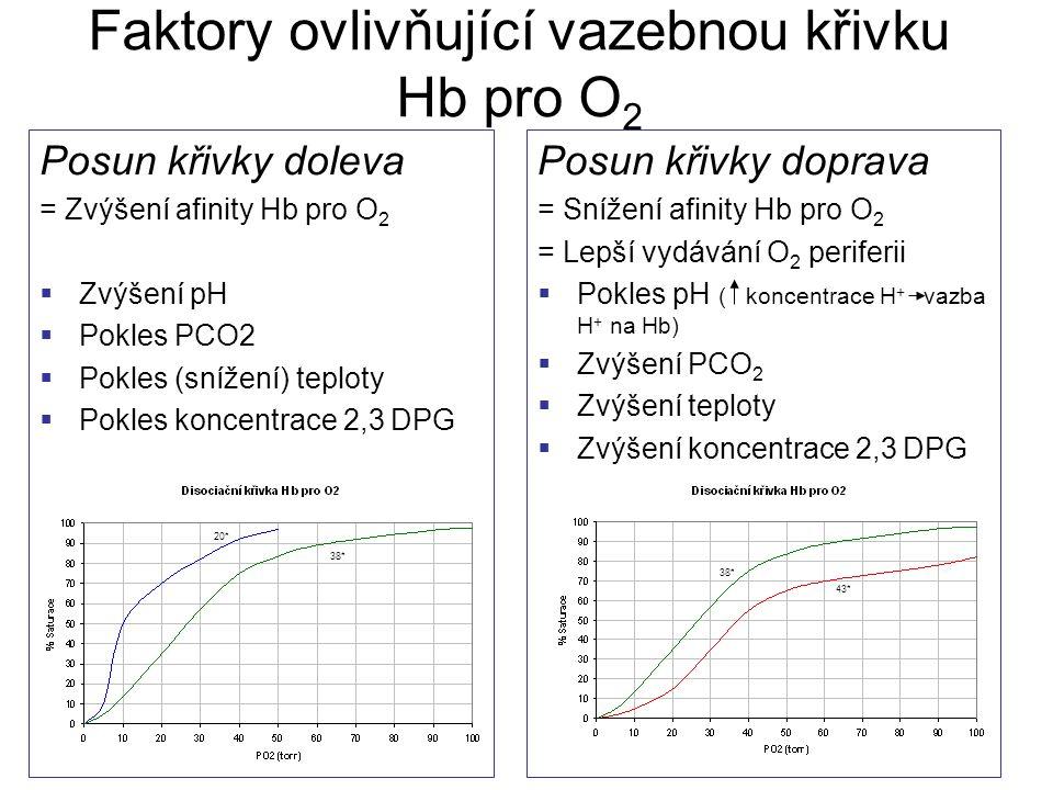 Faktory ovlivňující vazebnou křivku Hb pro O 2 Posun křivky doleva = Zvýšení afinity Hb pro O 2  Zvýšení pH  Pokles PCO2  Pokles (snížení) teploty