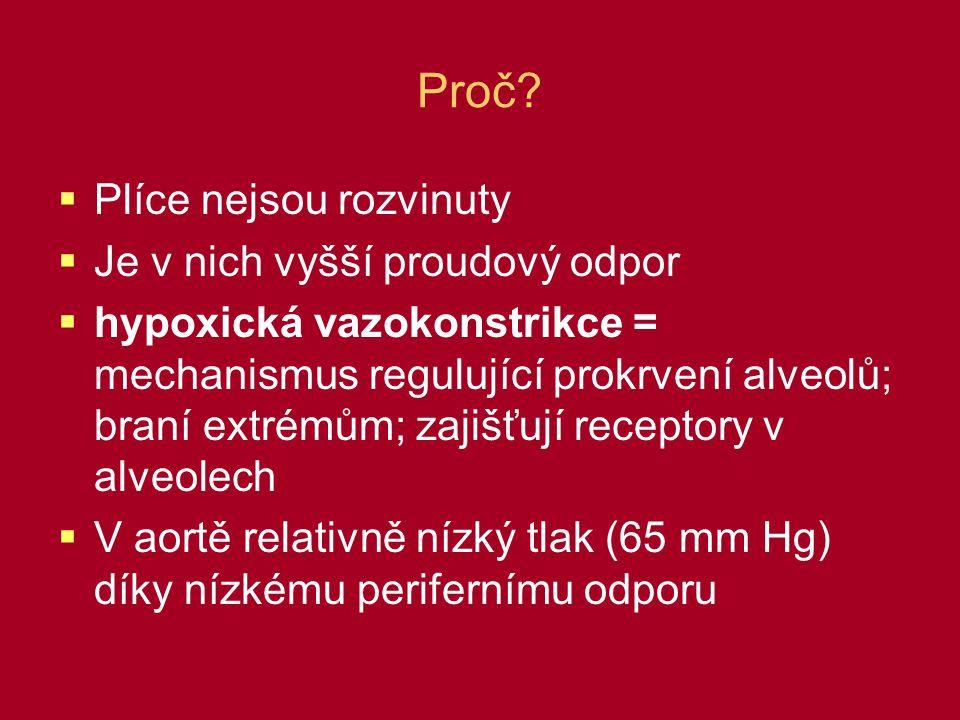 Proč?  Plíce nejsou rozvinuty  Je v nich vyšší proudový odpor  hypoxická vazokonstrikce = mechanismus regulující prokrvení alveolů; braní extrémům;