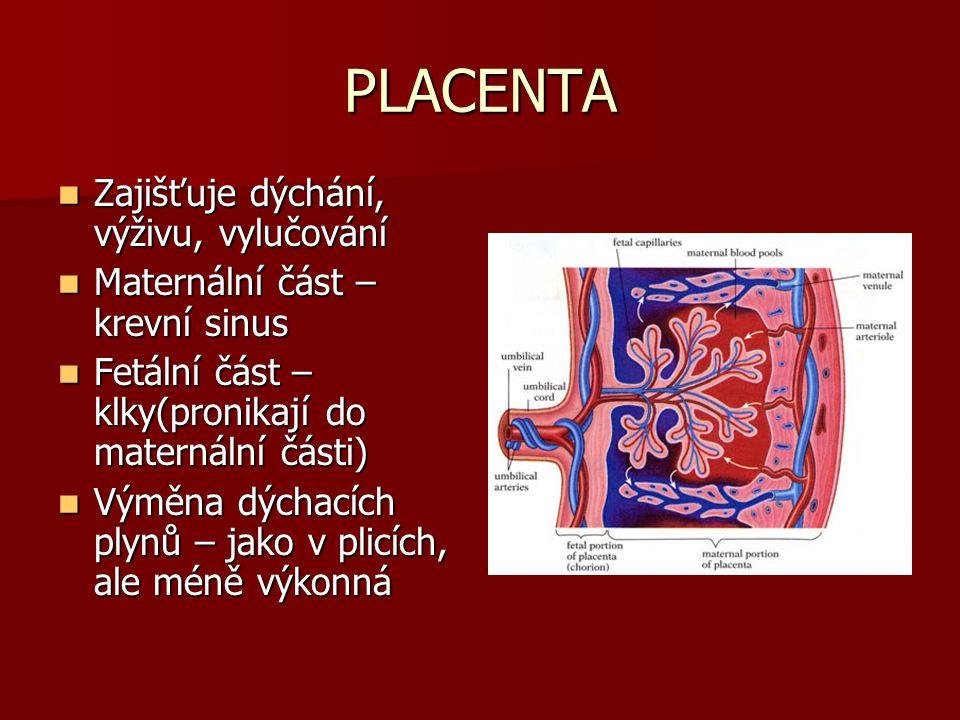 KVÍZ KVÍZ Foramen ovale – Foramen ovale – fossa ovalis fossa ovalis Ductus arteriosus – Ductus arteriosus – ligamentum arteriosum ligamentum arteriosum Aa.umbilicales – Aa.umbilicales – ligg.umbilicalia medialis ligg.umbilicalia medialis V.umbilicalis – V.umbilicalis – lig.teres hepatis lig.teres hepatis Ductus venosus – Ductus venosus – lig.venosum lig.venosum