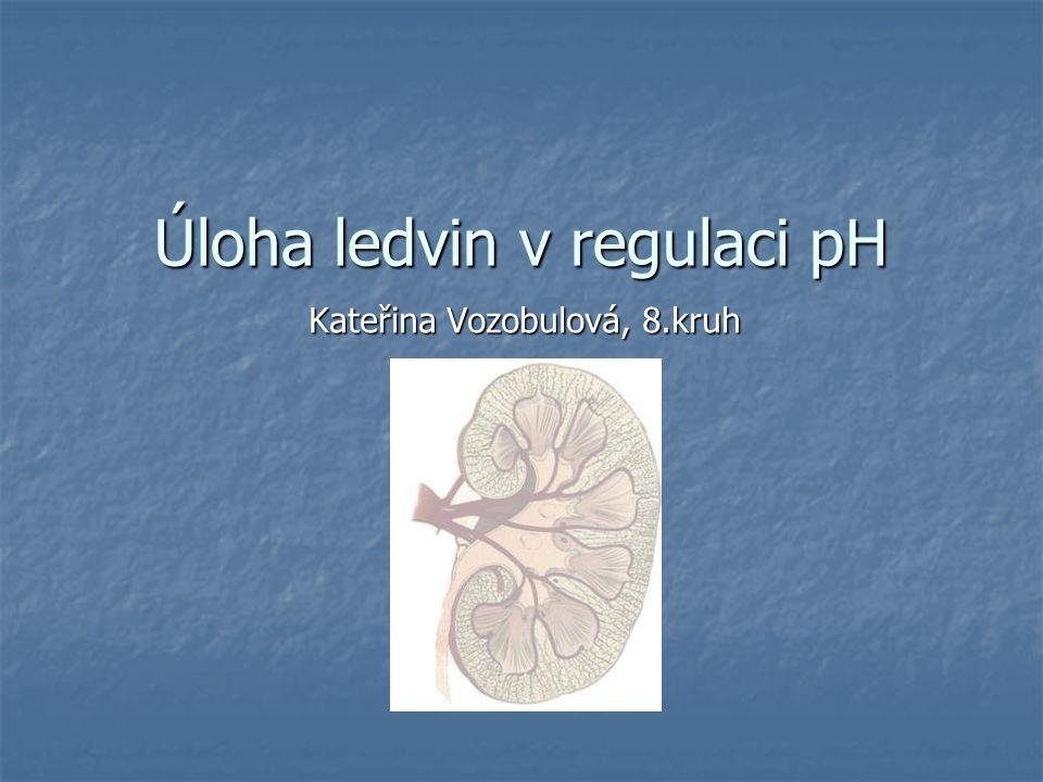 Regulace pH Konstantní hodnota pH je pro organismus velmi důležitá Konstantní hodnota pH je pro organismus velmi důležitá pH definitivní moči 4,5 – 7,8 a pH krve 7,4 pH definitivní moči 4,5 – 7,8 a pH krve 7,4 Větší odchylky od normy znamenají velké problémy, např.: Větší odchylky od normy znamenají velké problémy, např.: poruchy metabolismu poruchy metabolismu permeability membrán distribuce elektrolytů Organismus potřebuje pufry Organismus potřebuje pufry