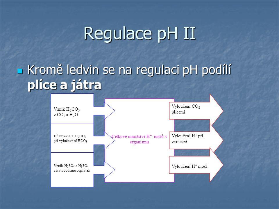 Regulace pH II Kromě ledvin se na regulaci pH podílí plíce a játra Kromě ledvin se na regulaci pH podílí plíce a játra Celkové množství H + iontů v or