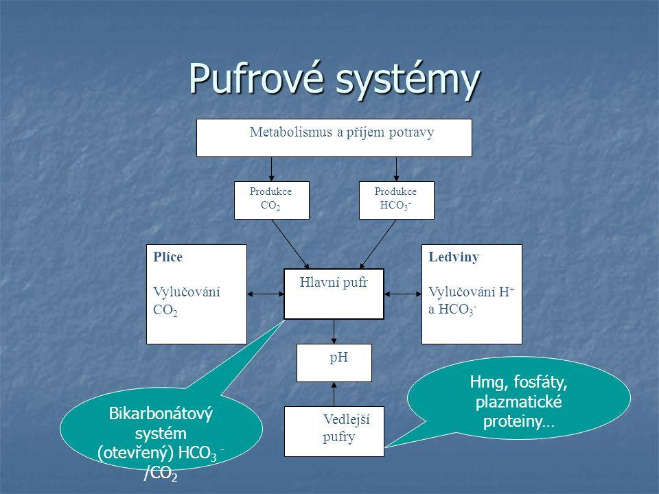 Pufrové systémy Pufrové systémy Hlavní pufr Ledviny Vylučování H + a HCO 3 - Plíce Vylučování CO 2 pH Vedlejší pufry Produkce CO 2 Produkce HCO 3 - Me