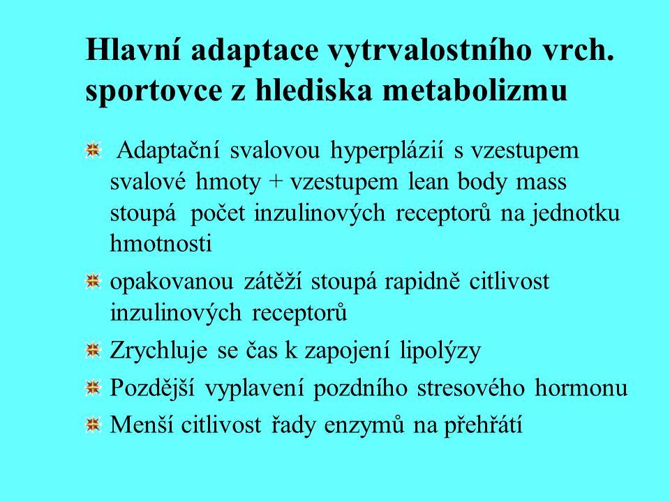 Hlavní adaptace vytrvalostního vrch. sportovce z hlediska metabolizmu Adaptační svalovou hyperplázií s vzestupem svalové hmoty + vzestupem lean body m