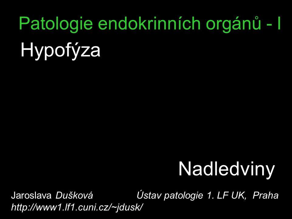 Patologie endokrinních orgánů - I Hypofýza Jaroslava Dušková Ústav patologie 1. LF UK, Praha http://www1.lf1.cuni.cz/~jdusk/ Nadledviny