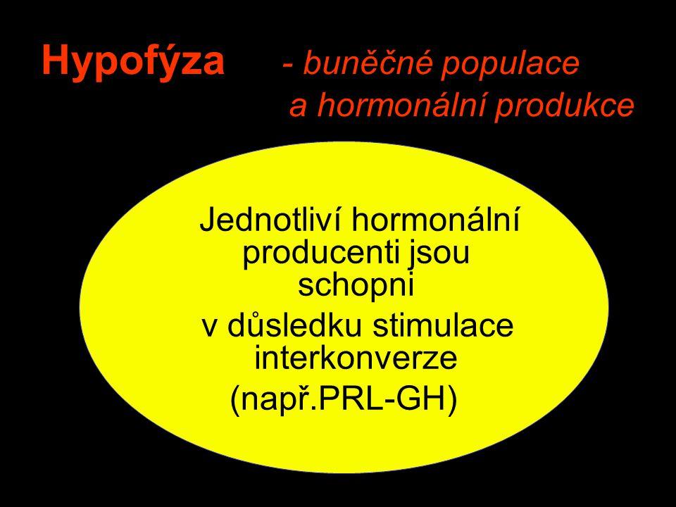 Hypofýza - buněčné populace a hormonální produkce Jednotliví hormonální producenti jsou schopni v důsledku stimulace interkonverze (např.PRL-GH)