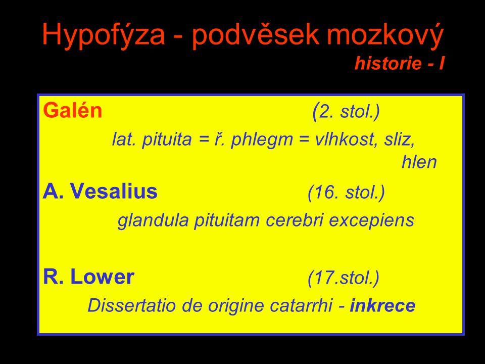 Hypofýza - podvěsek mozkový historie - I Galén ( 2. stol.) lat. pituita = ř. phlegm = vlhkost, sliz, hlen A. Vesalius (16. stol.) glandula pituitam ce