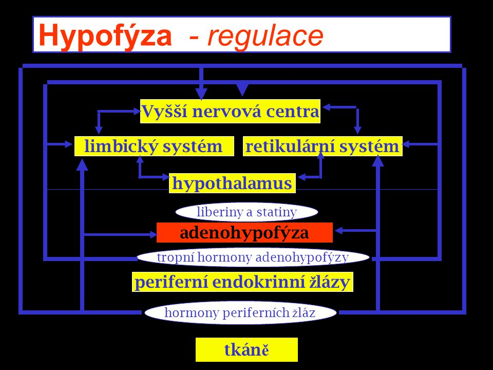 Poslové neuroimunoendokrinní regulace u Neurotransmitery u Interleukiny u Hormony