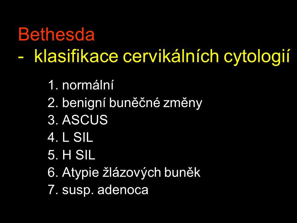 Bethesda - klasifikace cervikálních cytologií 1.normální 2.