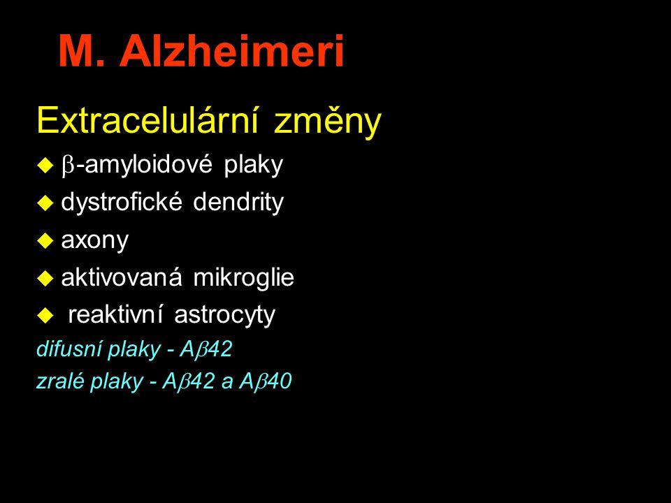 M. Alzheimeri Extracelulární změny   -amyloidové plaky u dystrofické dendrity u axony u aktivovaná mikroglie u reaktivní astrocyty difusní plaky - A