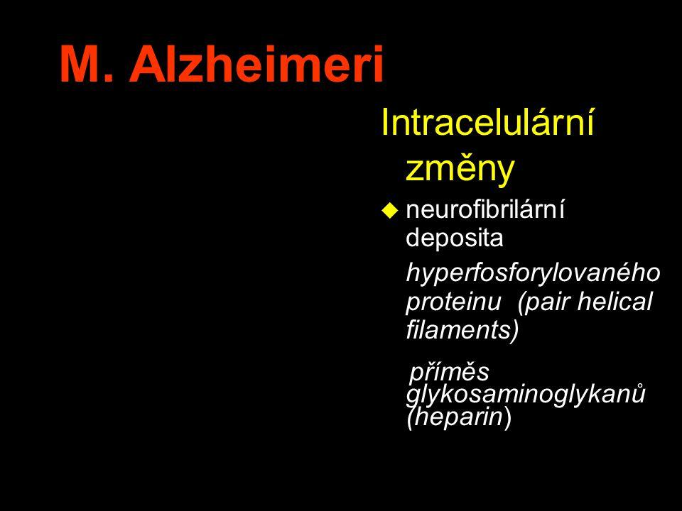 M. Alzheimeri Intracelulární změny u neurofibrilární deposita hyperfosforylovaného proteinu (pair helical filaments) příměs glykosaminoglykanů (hepari