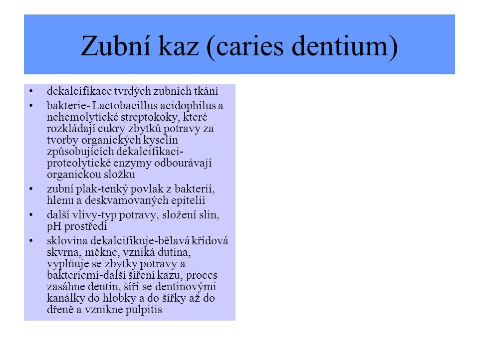 Zubní kaz (caries dentium) dekalcifikace tvrdých zubních tkání bakterie- Lactobacillus acidophilus a nehemolytické streptokoky, které rozkládají cukry
