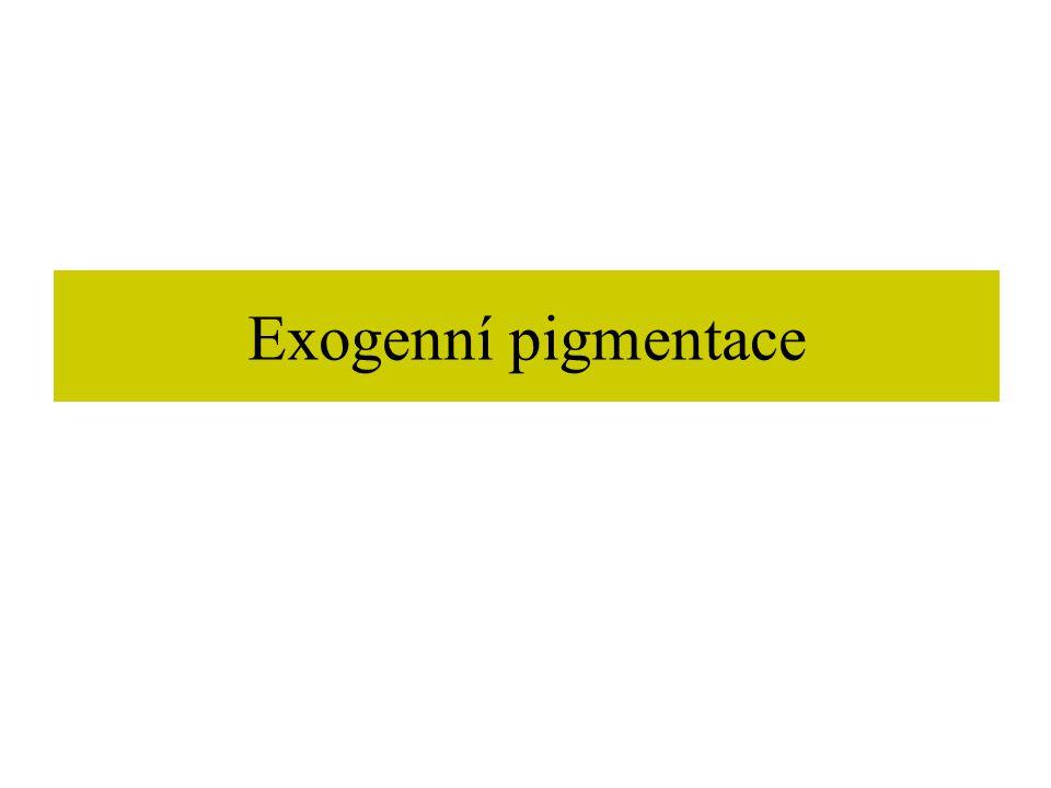 Exogenní pigmentace