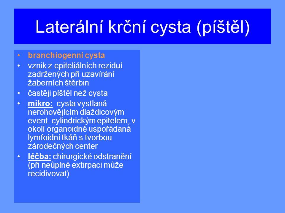 Laterální krční cysta (píštěl) branchiogenní cysta vznik z epiteliálních reziduí zadržených při uzavírání žaberních štěrbin častěji píštěl než cysta mikro: cysta vystlaná nerohovějícím dlaždicovým event.