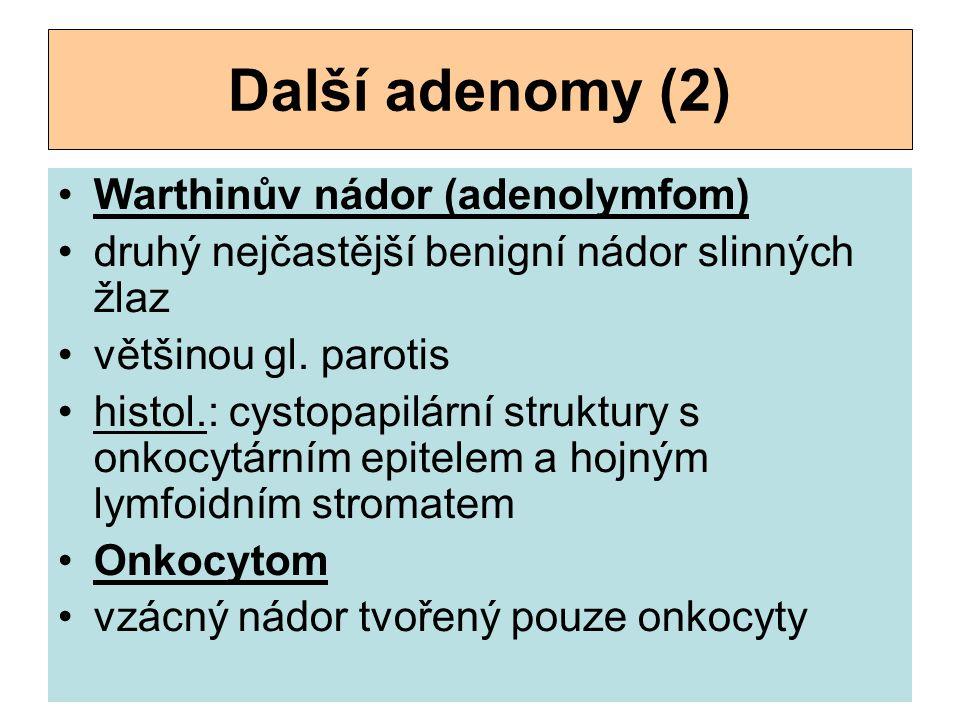 Další adenomy (2) Warthinův nádor (adenolymfom) druhý nejčastější benigní nádor slinných žlaz většinou gl. parotis histol.: cystopapilární struktury