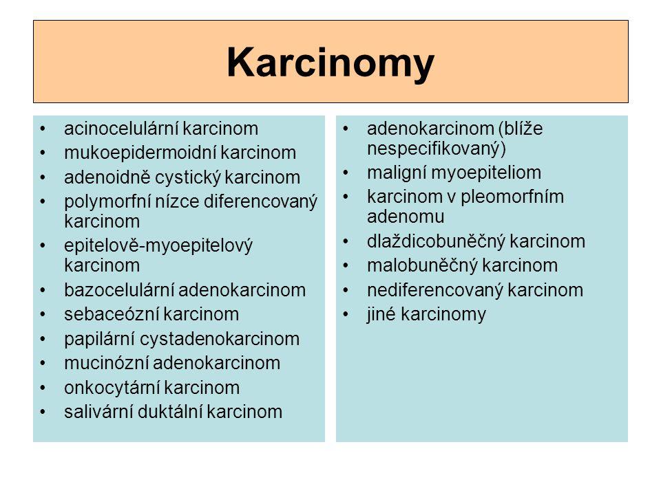 Karcinomy acinocelulární karcinom mukoepidermoidní karcinom adenoidně cystický karcinom polymorfní nízce diferencovaný karcinom epitelově-myoepitelový