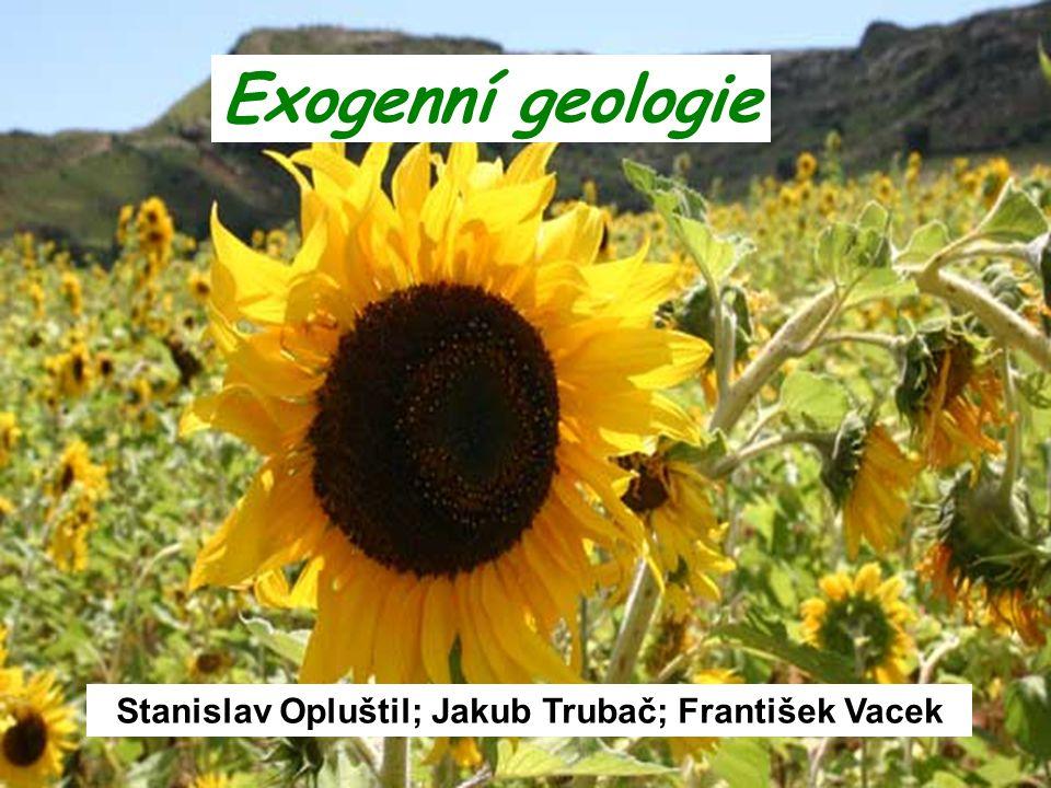 zdroj energie ve slunečním záření hlavními činiteli jsou hydrosféra, atmosféra, biosféra dochází k erozi, transportu a ukládání hmot výraznou roli má klima