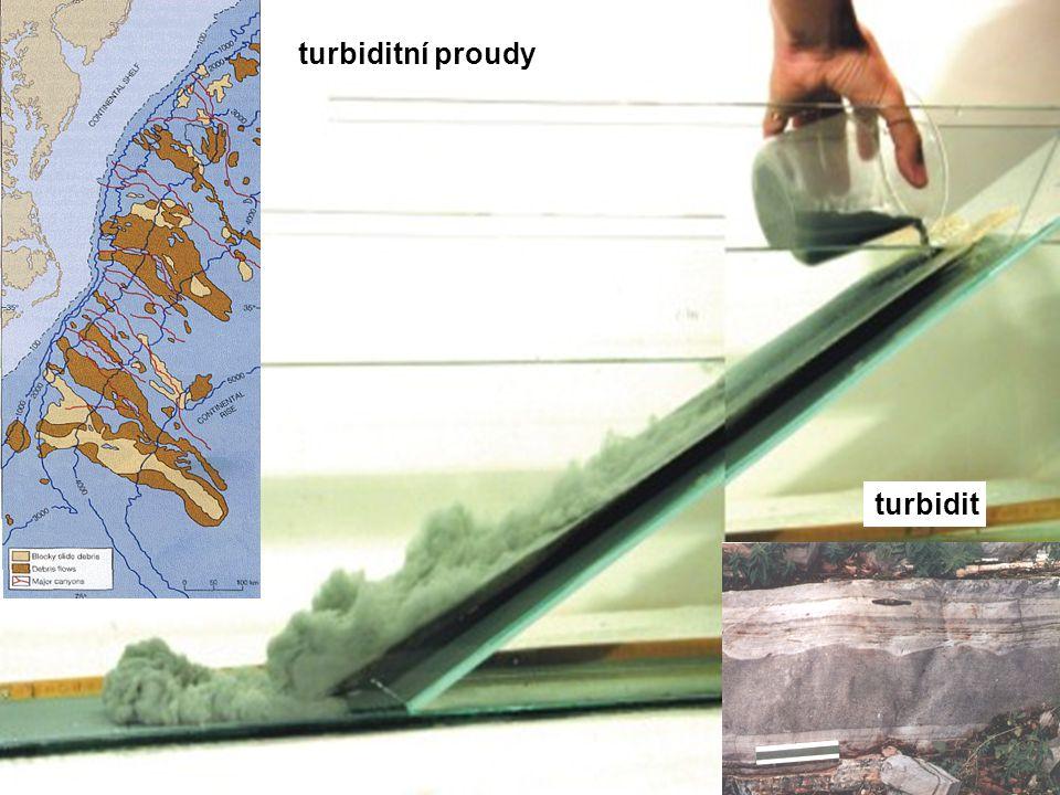 turbiditní proudy turbidit