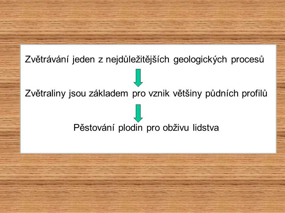 soubor procesů, při kterém dochází k mechanickému rozpadu a chemickému rozkladu hornin na zemském povrchu vznikají nesoudržné zvětraliny (rezidua) odolnost minerálů vůči zvětrávání: obrácené Bowenovo schéma = minerály stabilní za vysokých teplot a tlaků na zemském povrchu nejsnáze podléhají zvětrávání intenzita zvětrání je dána: klimatem, minerálním složením hornin, tektonickým porušením, charakterem reliéfu, délkou působení